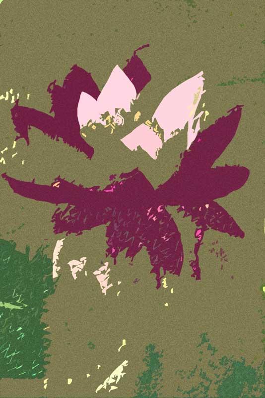 lily-filmgrain-cutout2