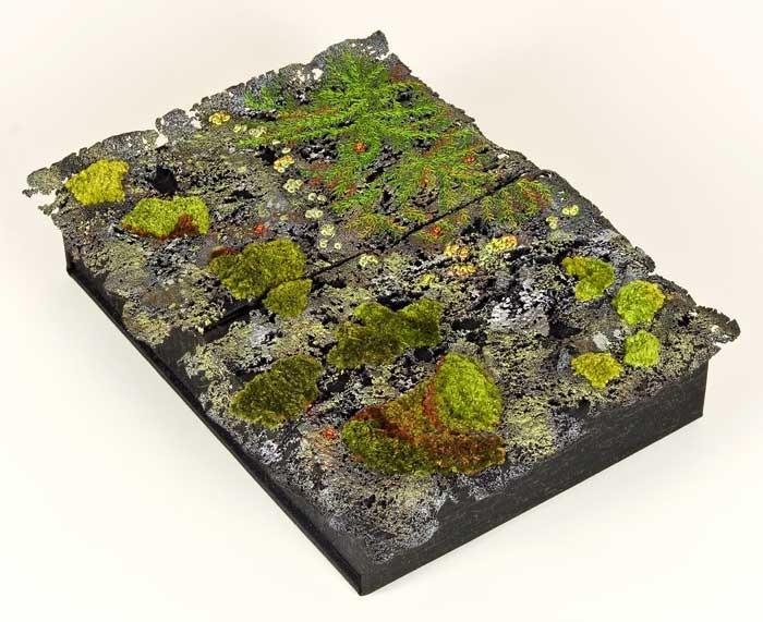 "The Moss Box, 10"" x 7"" x 1.75"", Photographer John Telford"