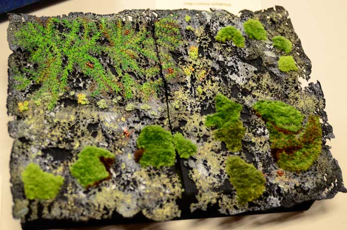 Moss Box by Jeri Oswalt