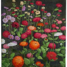 Z is For Zinnia, C is For Cosmos