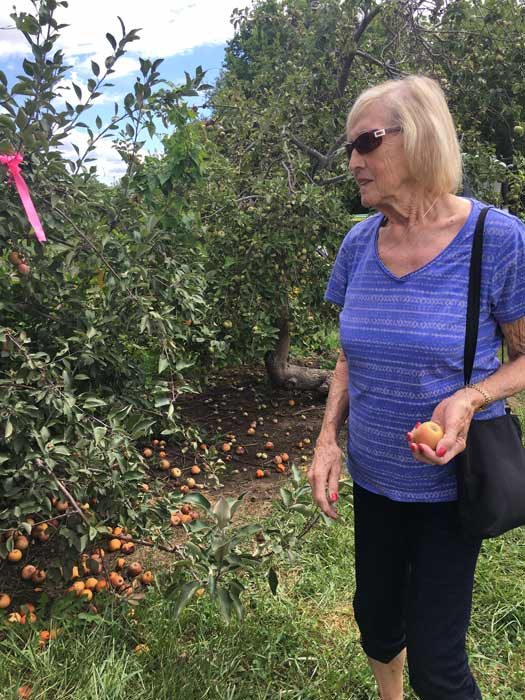 My Aunt Lee in the orchard
